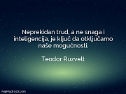 Teodor Ruzvelt: Neprekidan trud, a ne...