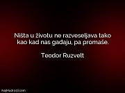 Teodor Ruzvelt: Ništa u životu ne...