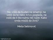 Meša Selimović: Ne voliš da budeš...
