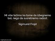 Sigmund Frojd: Mi više težimo ka...